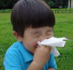 alergia 2