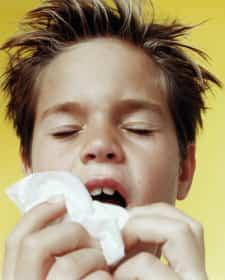 alergias-3.jpg