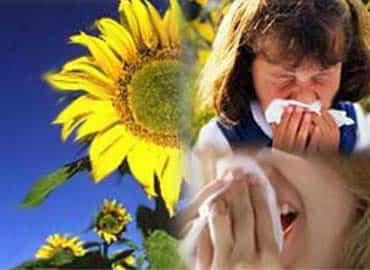 alergias-al-polen.jpg