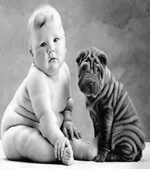 bebe-con-perro-gordito.jpg