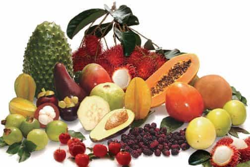 frutas verano 12