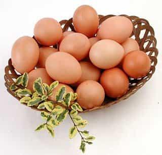 huevos_0.jpg