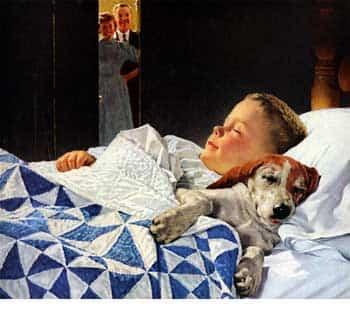 perro_nino_durmiendo.jpg
