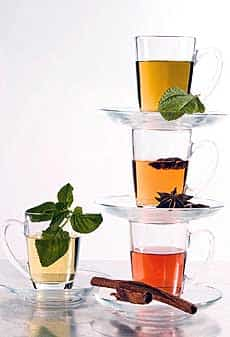 tent infusiones