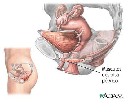 incontinencia.jpg