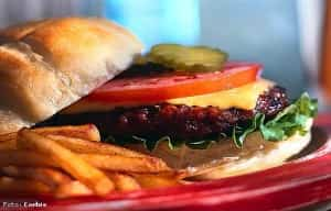 hamburguesa-comida-chatarra