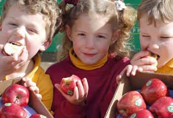 Children eating apples File 5973515