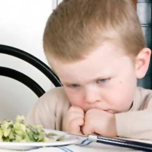 nen que no menja cat