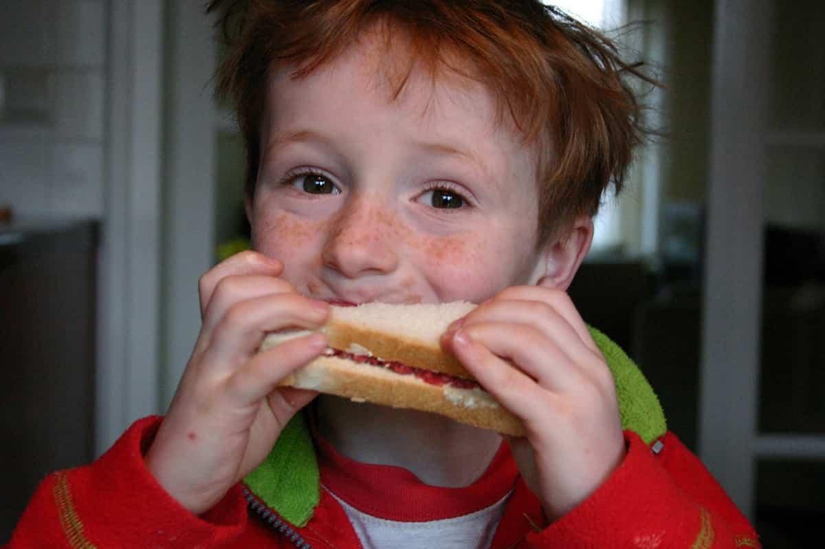 azucar alimentacion saludable