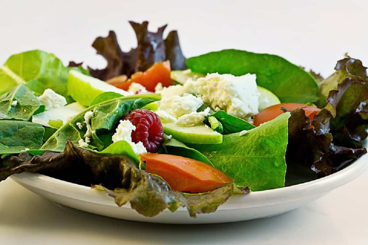 salad 374173 960 720