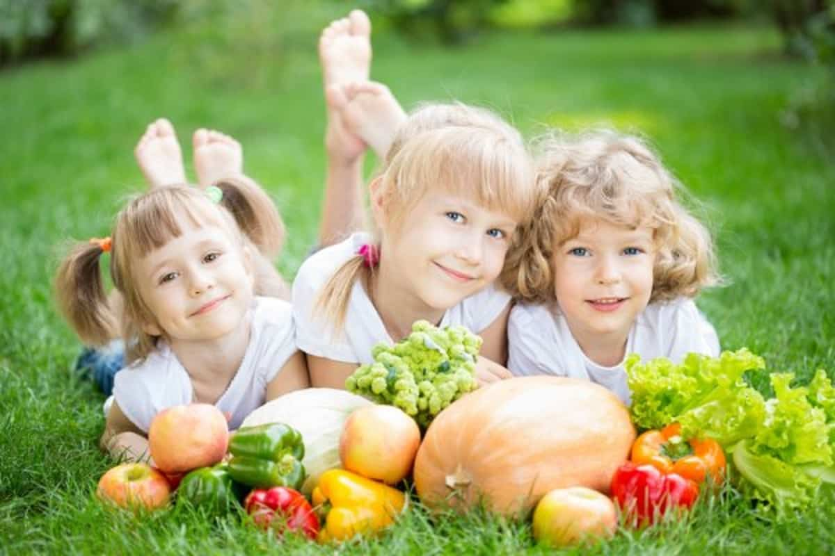 Alimentos nutritivos para los niños en verano