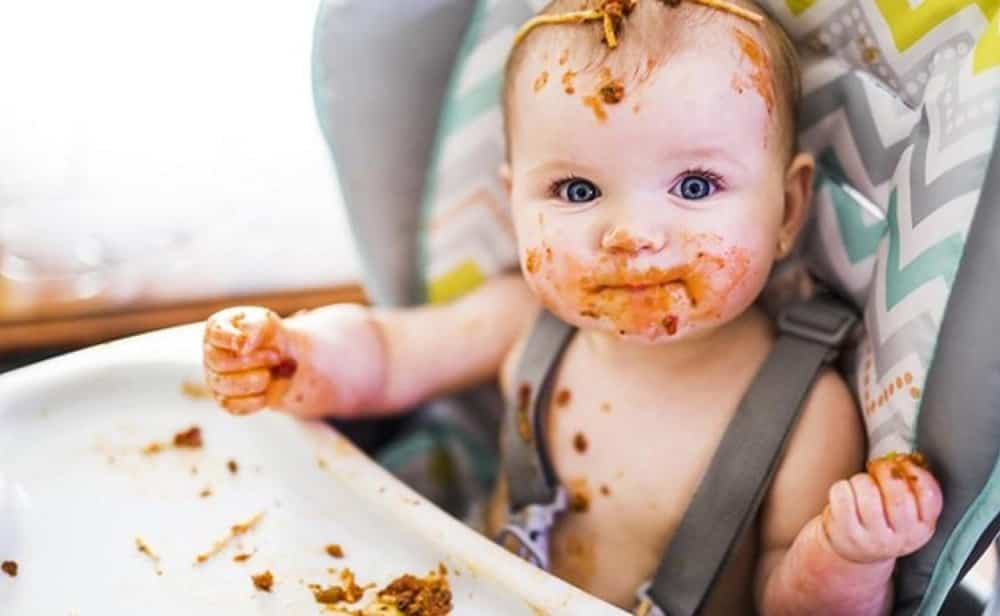 baby led-weaning