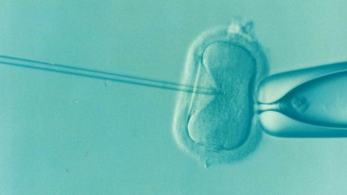 tratamientos de fertilidad