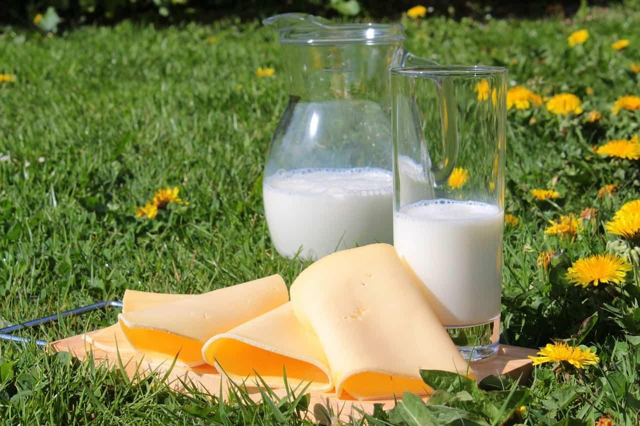 Los nutrientes como ser los lácteos son fundamentales para fortalecer huesos y dientes.