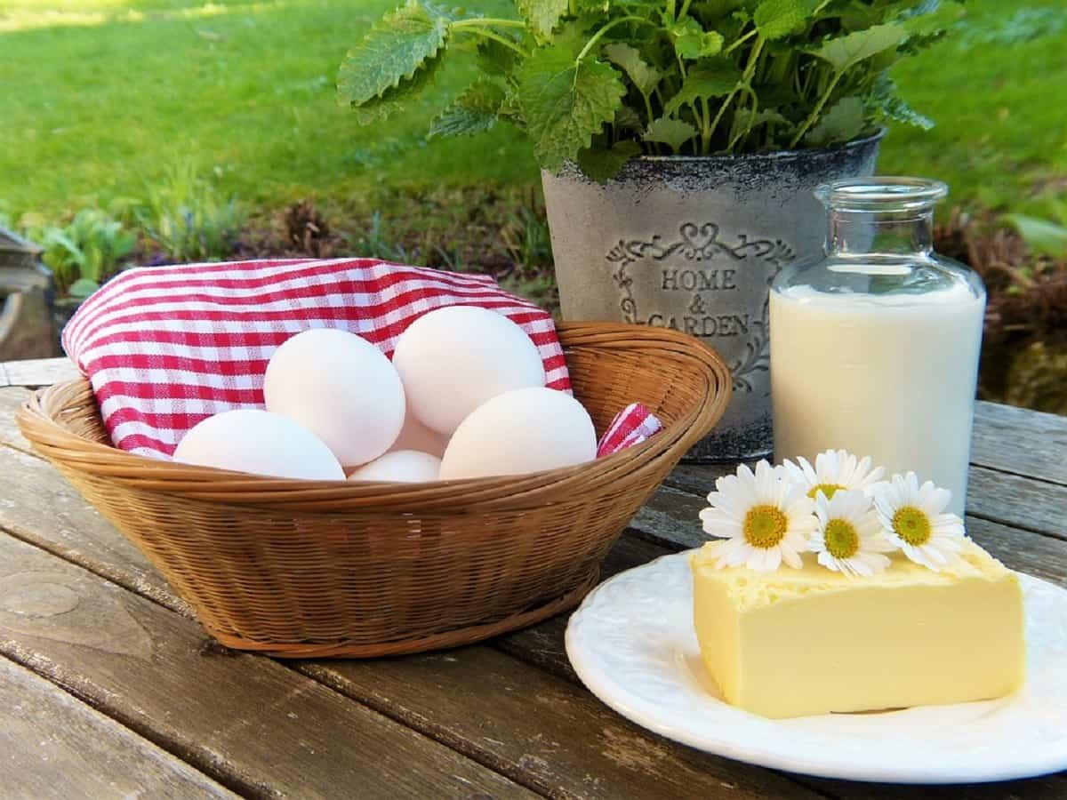 Una buena y equilibrada alimentación es fundamental para llevar un buen embarazo y tener un parto sano y sin complicaciones.